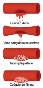 Mecanismos de la coagulacion