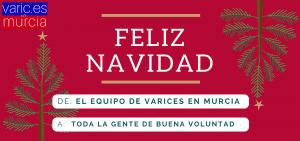Feliz Navidad desde Varices Murcia